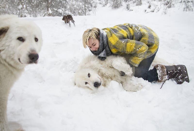 Kvinnan plaskar med en vit hund i snö royaltyfria foton