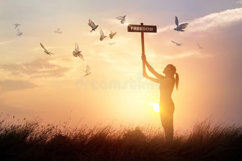 Kvinnan rymmer ett tecken med ordfrihets- och flygfåglar på solnedgång royaltyfri foto