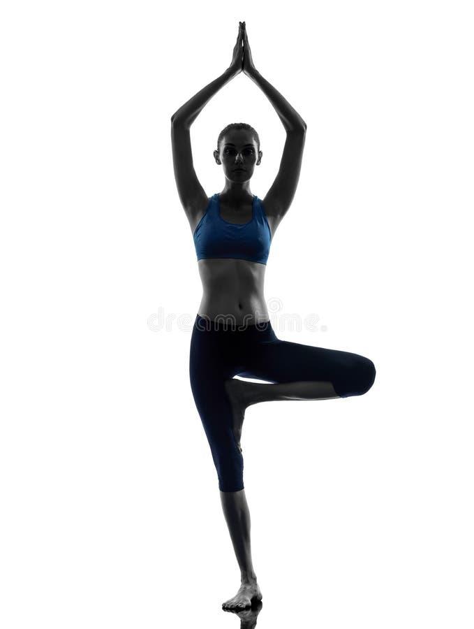 Kvinnan som övar treen, poserar yoga royaltyfria foton