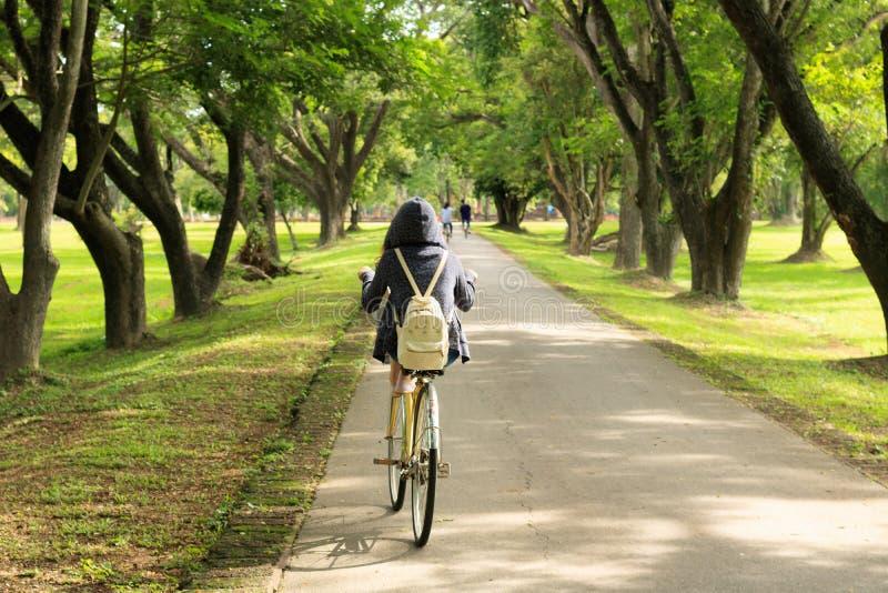 Kvinnan som cyklar en cykel på den träd fodrade landsvägen i thaila arkivfoton