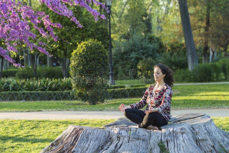 Kvinnan som mediterar i, parkerar arkivfoton