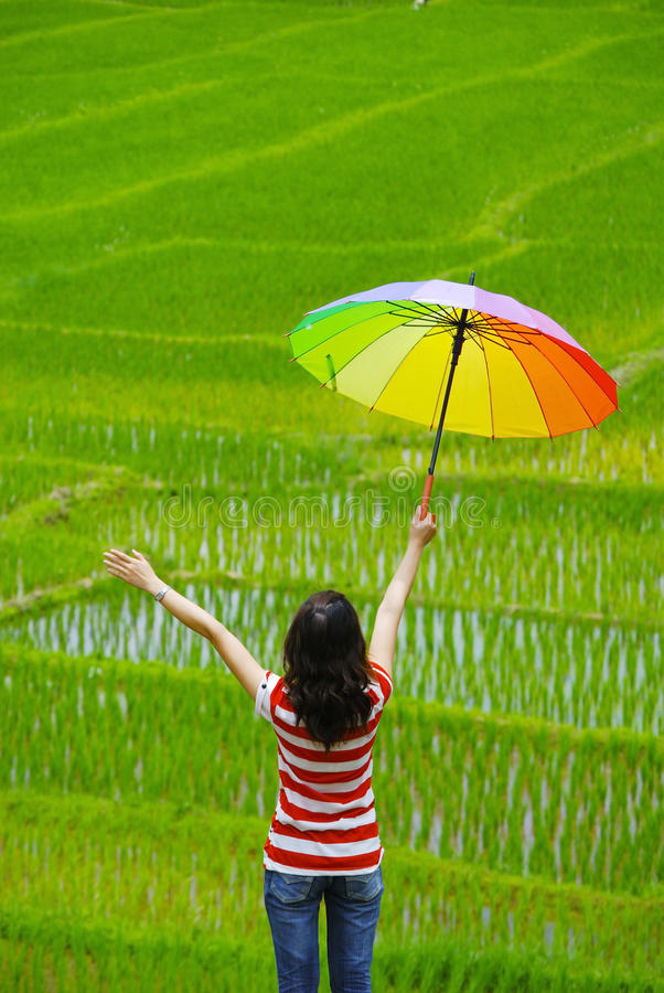 Kvinnan som rymmer det multicolor paraplyet, kopplar av i fält arkivbilder