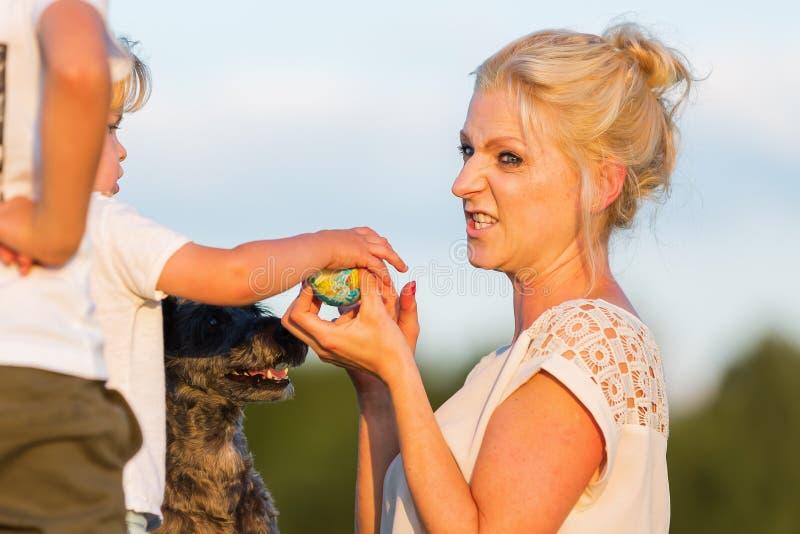 Kvinnan spelar med hennes pojkechilds och en hund utomhus fotografering för bildbyråer