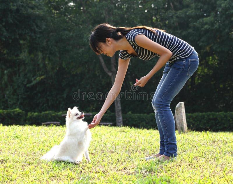 Kvinnan utbildar hennes hund royaltyfria bilder