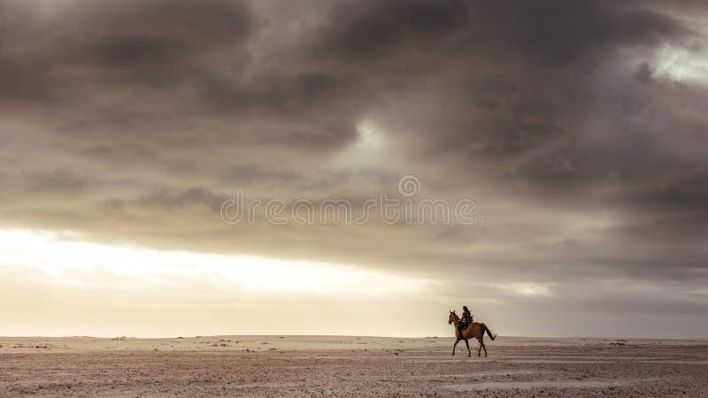 Kvinnaridning med hennes hingst p? stranden arkivbild