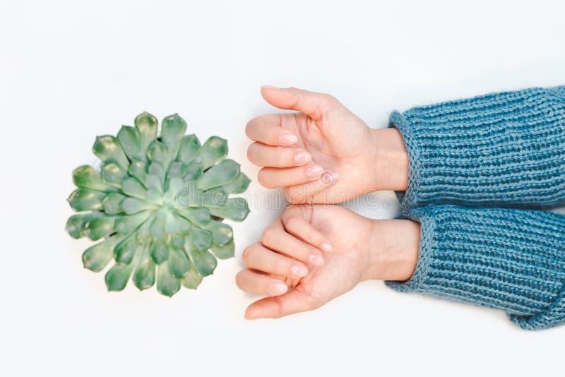 Kvinnas händer med härlig manikyr som isoleras på vit bakgrund royaltyfri bild