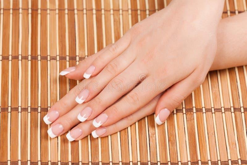 Kvinnas händer med perfekt fransk manikyr royaltyfri bild