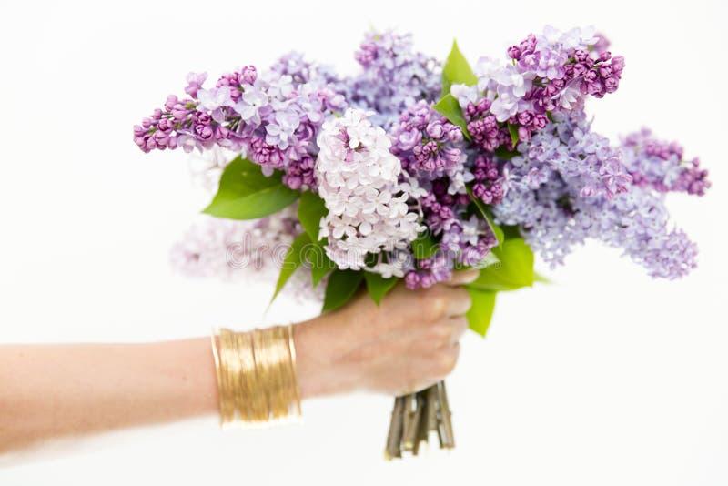 Kvinnas händer som rymmer buketten av lilor arkivbild