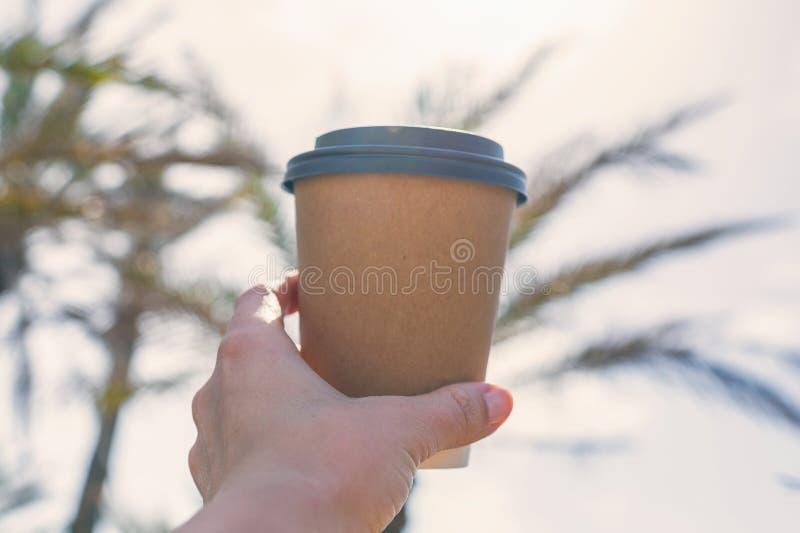 Kvinnas hand med papperskoppen kaffe på palmträdbakgrunden arkivfoto