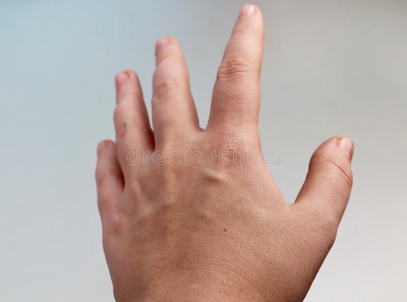 Kvinnas hand på en ljus bakgrund öppet gömma i handflatan arkivfoto