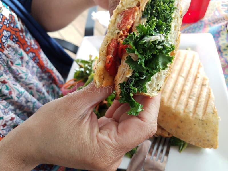 Kvinnas hand som rymmer höna- och grönsallatsmörgåsen arkivfoto
