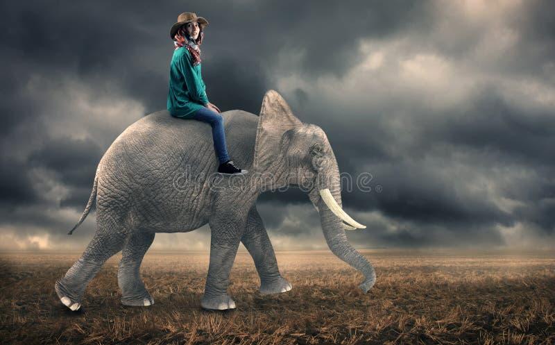 Kvinnasammanträde på en elefant royaltyfri fotografi