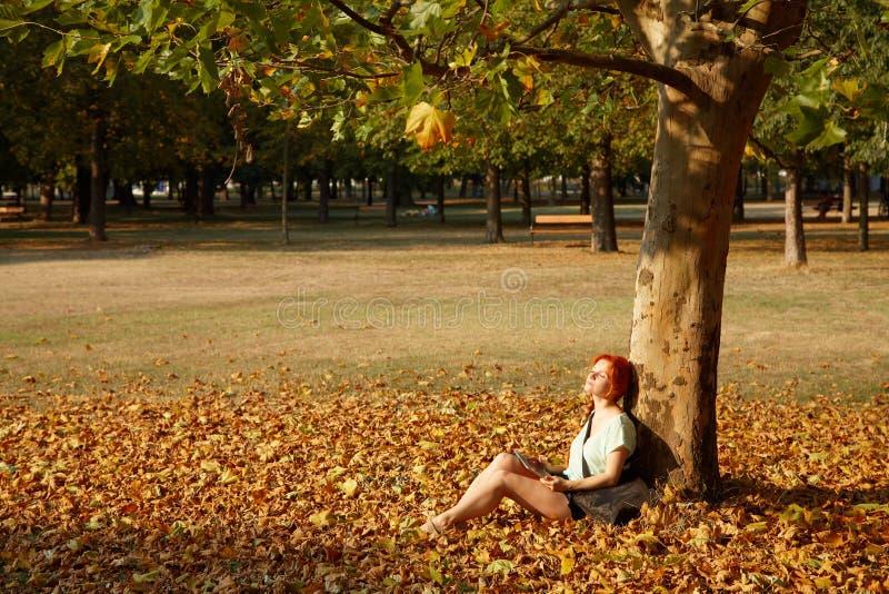 Kvinnasammanträde under ett träd parkerar in royaltyfri fotografi
