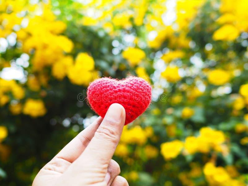 Kvinnaselfiehand som rymmer hjärtaform över blommasuddighetsbakgrund arkivfoton