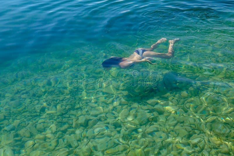 Kvinnasimning under vatten i den klara sjön med fisken royaltyfri fotografi