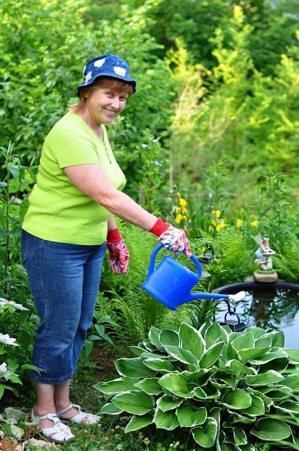 Kvinnaträdgårdsmästare som bevattnar växterna arkivfoton