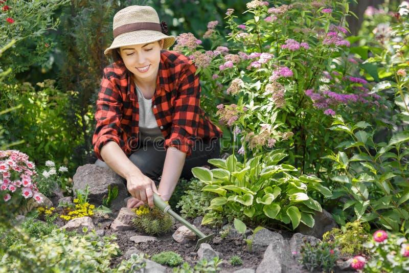 Kvinnaträdgårdsmästare som rensar ogräs royaltyfri foto