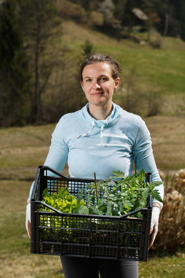 Kvinnaträdgårdsmästare som visar plantor samlingen som förbereds att planteras på trädgård royaltyfri foto