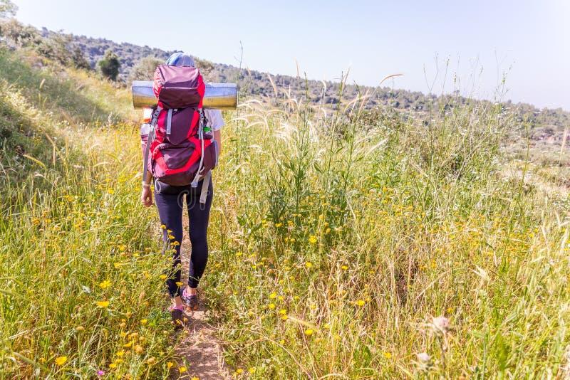 Kvinnaturist som fotvandrar det höga gräsfältet royaltyfri bild