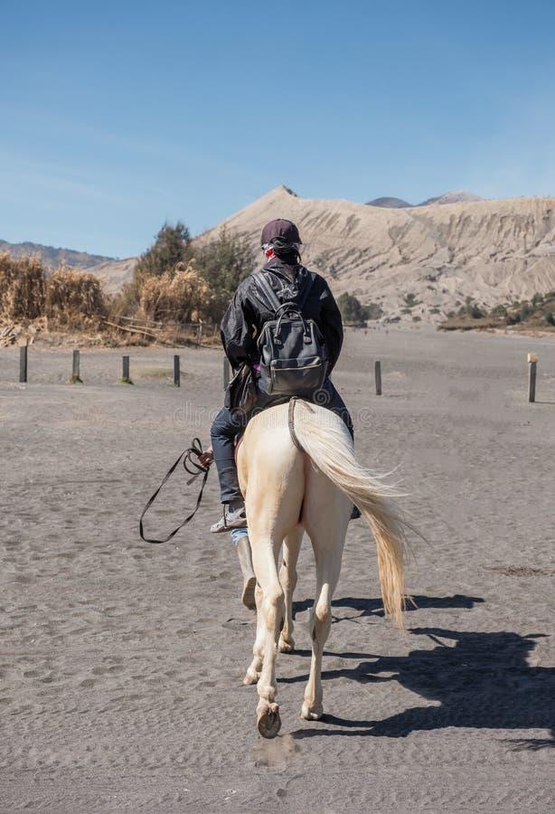 Kvinnaturist som rider en vit häst på öken med vulkan royaltyfri bild