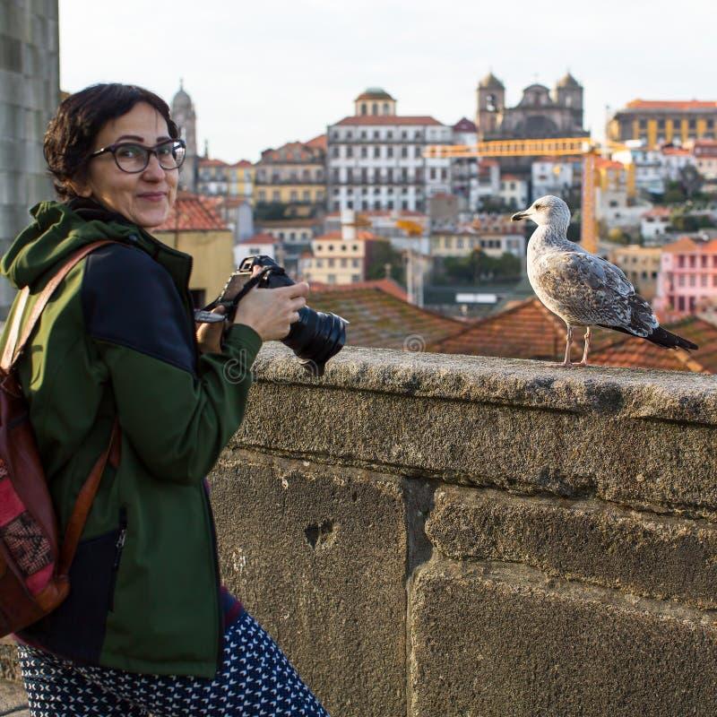 Kvinnaturist som tar bilder en seagull på en bakgrund av Porto den gamla staden royaltyfri fotografi