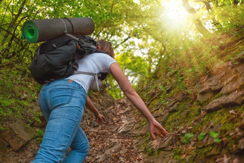 Kvinnaturisten g?r p? en bergskogslinga tillbaka sikt ljus sun arkivbild
