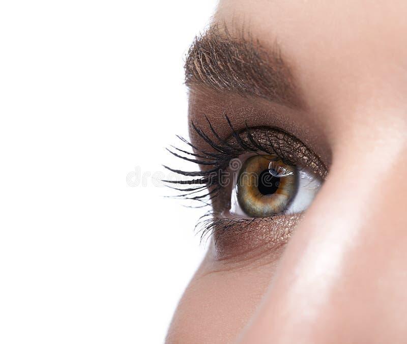 Kvinnlig ögonzon och krön med dagmakeup royaltyfri bild