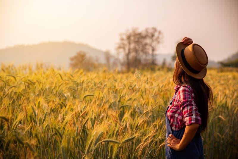 Kvinnlig agronom som ser solnedgång på horisonten royaltyfria foton