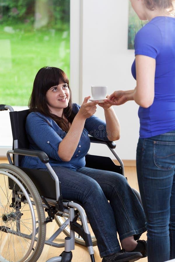 Kvinnlig anhörigvårdare som ger kopp te till kvinnan på rullstolen arkivfoto