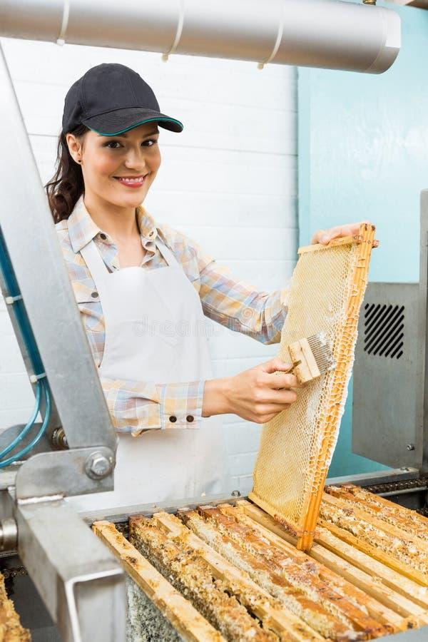 Kvinnlig Beekeeper Brushing Honeycomb arkivfoto