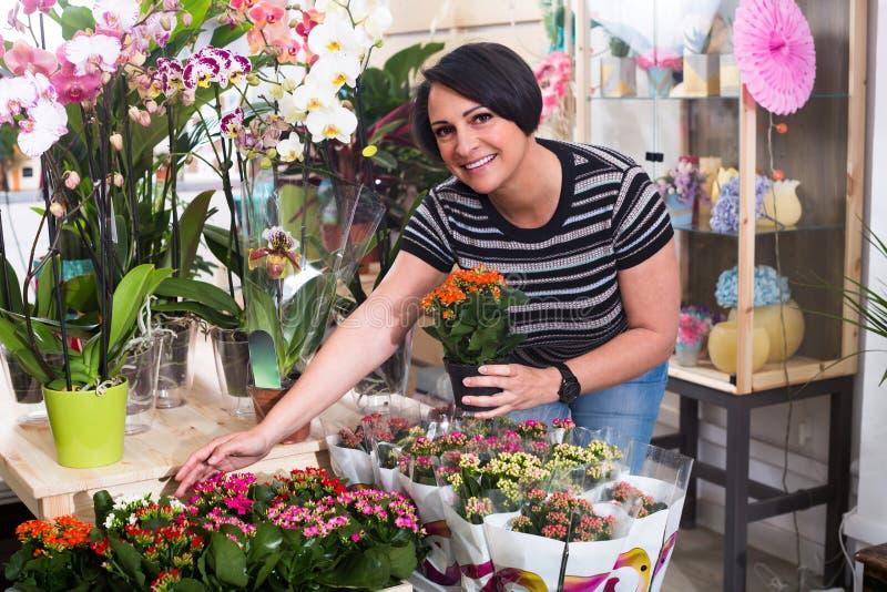 Kvinnlig blomsterhandlare med kalanchoe arkivbilder