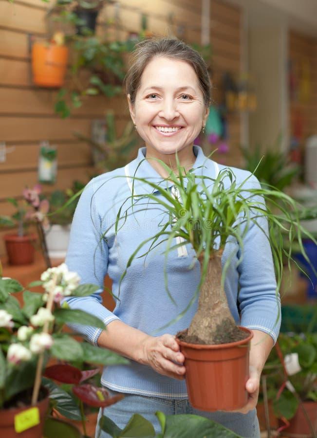 Kvinnlig blomsterhandlare med Nolinaväxten royaltyfri fotografi