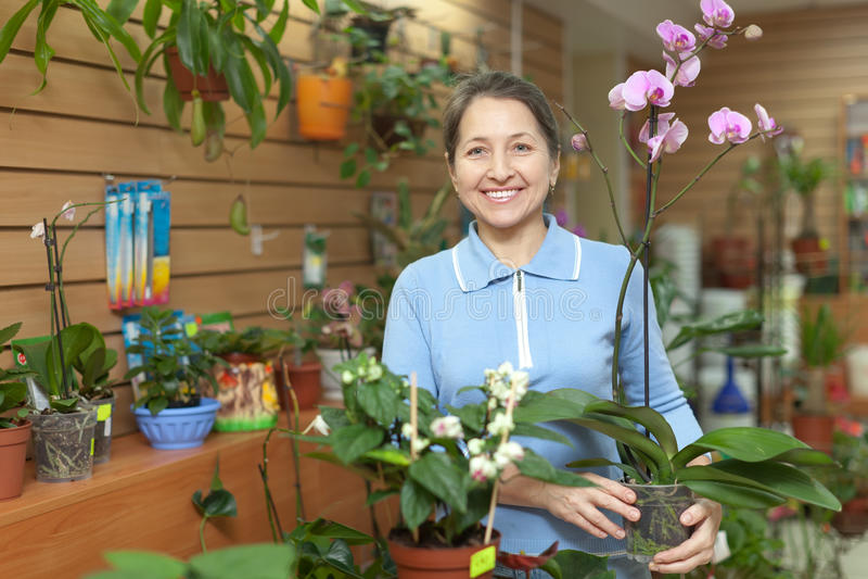Kvinnlig blomsterhandlare med orkidéväxten royaltyfria bilder