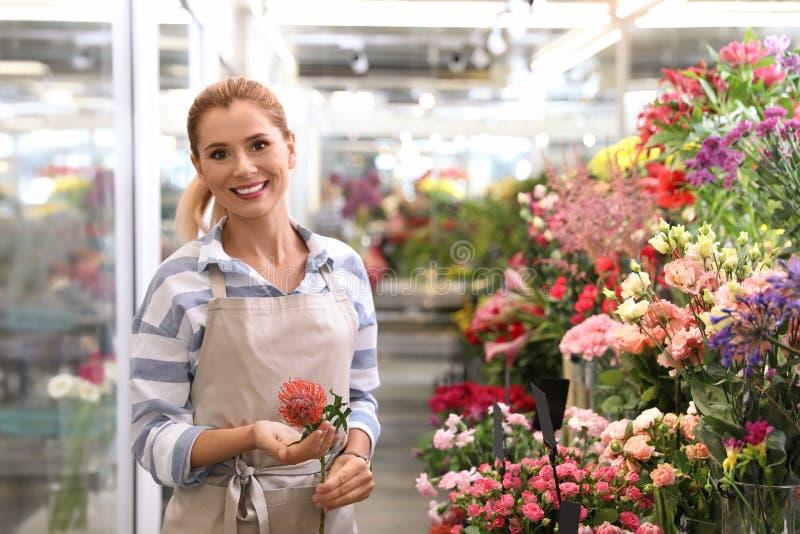 Kvinnlig blomsterhandlare som rymmer den härliga blomman arkivbild