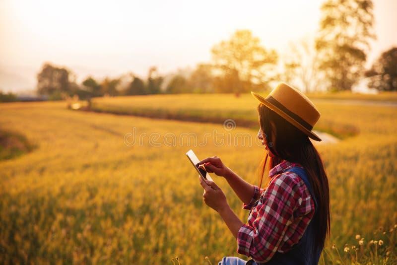 Kvinnlig bonde som använder minnestavladatoren i guld- veteskördfält arkivbilder