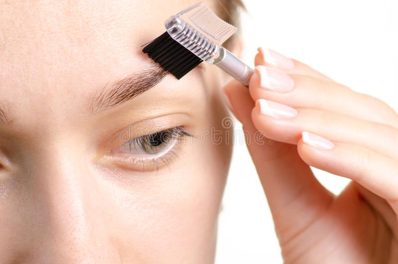 Kvinnlig borste för ögonbryn för ögonbrynformbrunt fotografering för bildbyråer