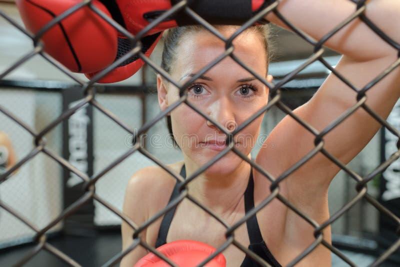 Kvinnlig boxare för stående som ser till och med metallfäktning royaltyfria bilder