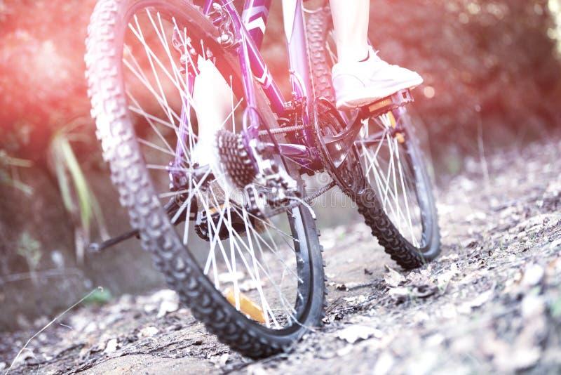 Kvinnlig cyklist som cyklar i bygd fotografering för bildbyråer