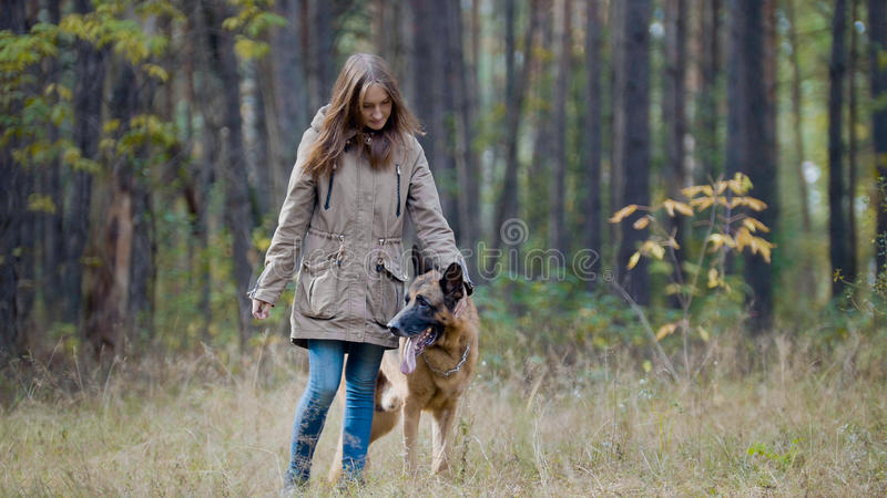 Kvinnlig för blont hår som spelar med hennes husdjur - tysk herde - som går på en höstskog royaltyfri fotografi