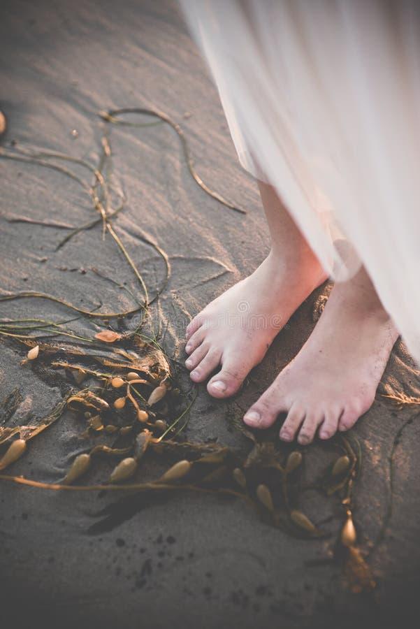 Kvinnlig fot nära havsväxt i sanden arkivfoto