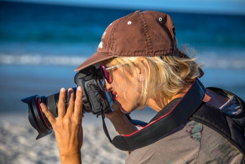 Kvinnlig fotograf på stranden royaltyfri bild