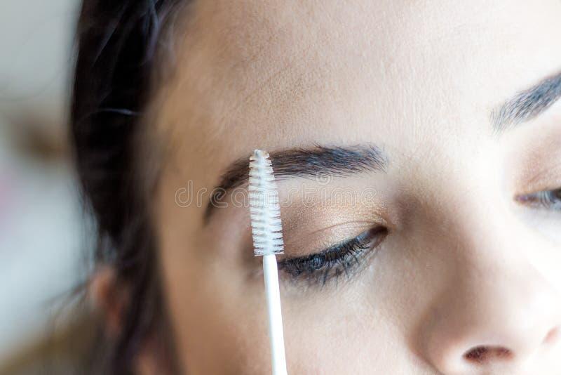 Kvinnlig framsida för smink Ögonbryn, ögon och hår royaltyfri fotografi