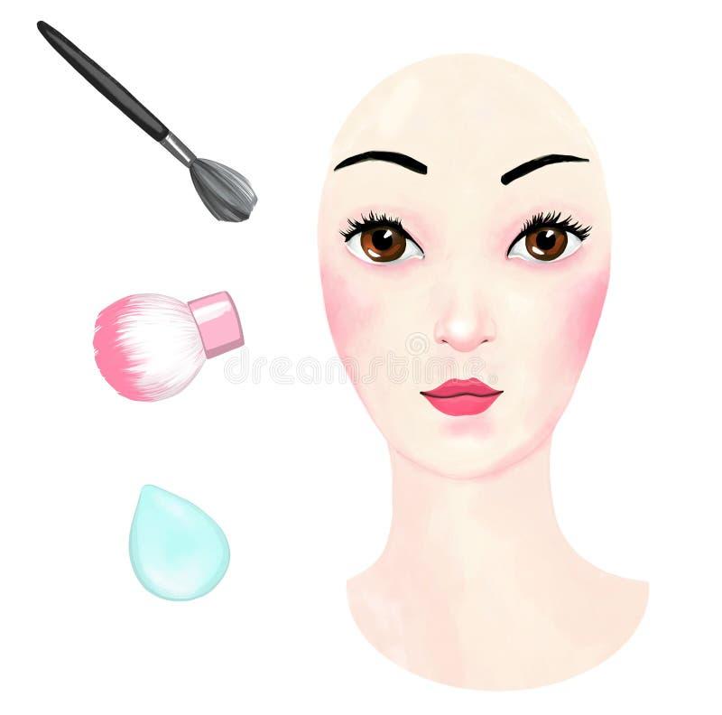 Kvinnlig framsida och tre makeupborstar som hand-dras p? en vit bakgrund, best?ndsdelar av kosmetiska tillv?gag?ngss?tt, smink oc stock illustrationer