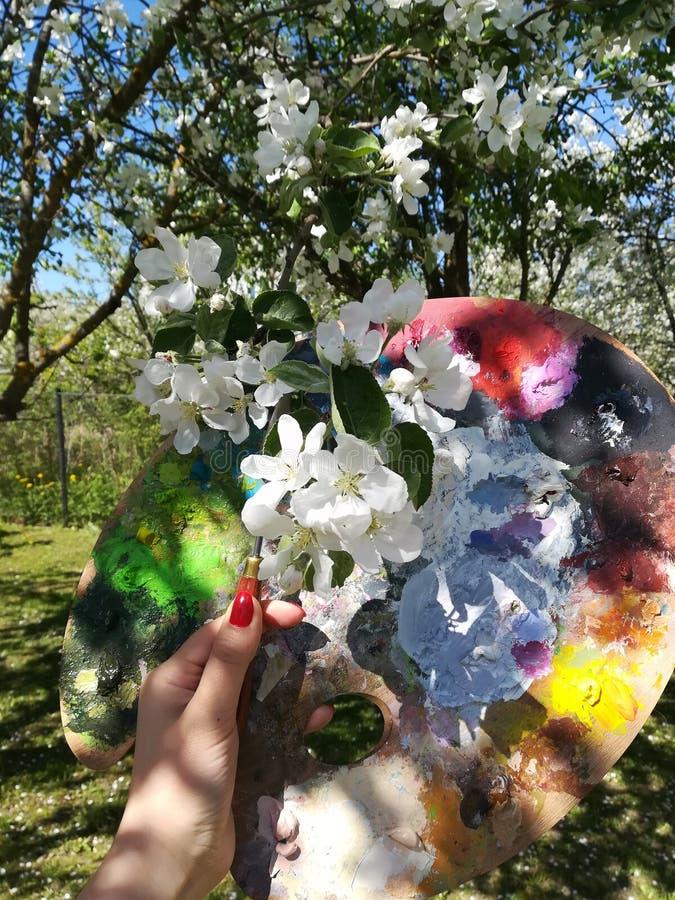 Kvinnlig hand med en palettkniv och en palett för målarfärger mot bakgrunden av att blomstra äppleträd royaltyfri bild