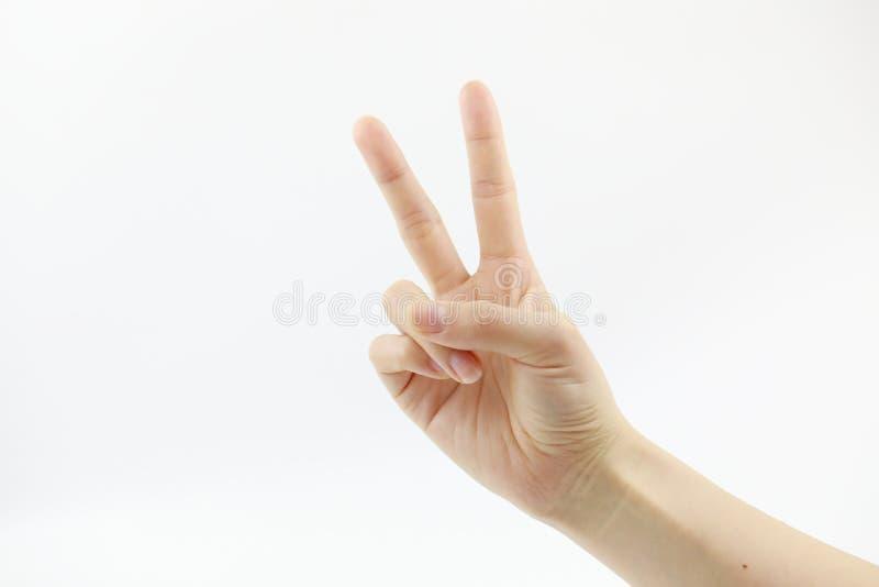 Kvinnlig hand på vit bakgrund med skugga Tummen och pekfingret monteras in i den reko rundan royaltyfri fotografi