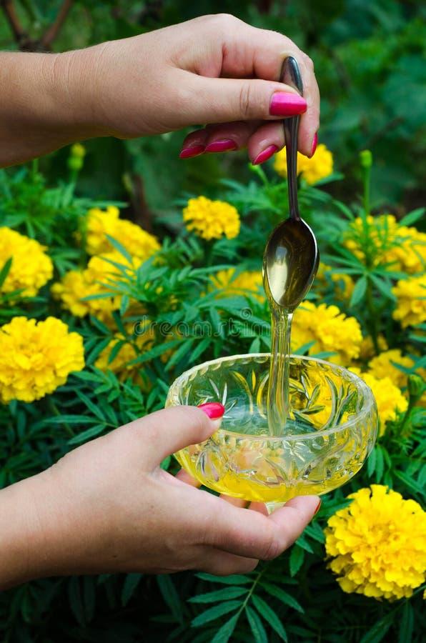Kvinnlig hand som rymmer en sked med honung arkivfoto