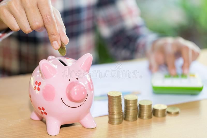 Kvinnlig hand som sätter myntet in i spargriscloseupen sparande pengar för begrepp för finans royaltyfria bilder
