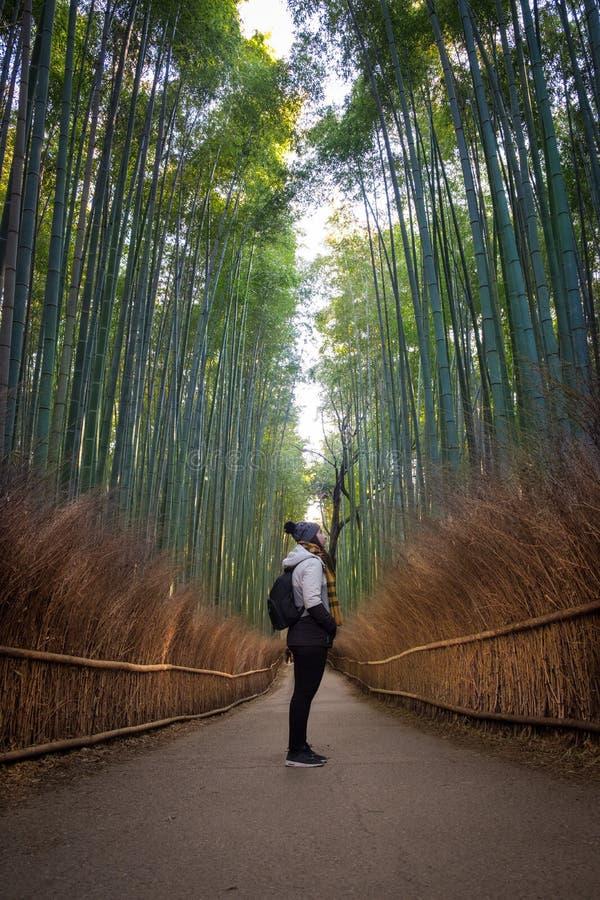 Kvinnlig handelsresandeflicka som ser bambuskogen av den Arashiyama weaen royaltyfria bilder