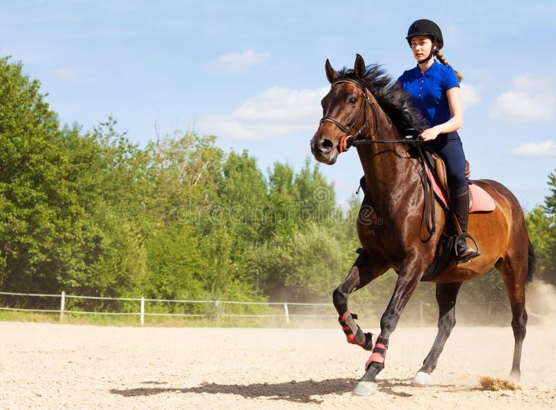 Kvinnlig jockey som galopperar på hästrygg på löparbanan royaltyfria bilder