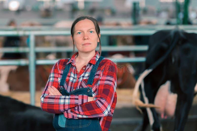 Kvinnlig jordbrukare i koskal på en mjölkboskapsuppfödare arkivfoto